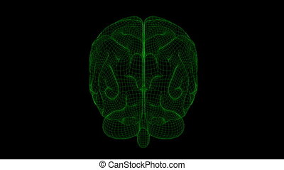 Brain Wireframe Green Black 20 - Loopable abstract brain...