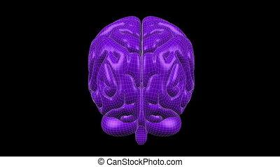Brain Wireframe Purple 16