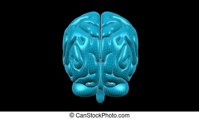 Brain Wireframe Aqua 07 - Loopable abstract brain animation...