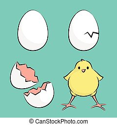 Egg And Chicken - Vector Illustration Of A Egg to Chicken...