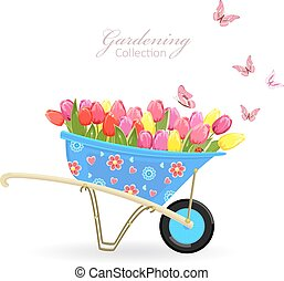 funny garden wheelbarrow with tulips and butterflies. gardening