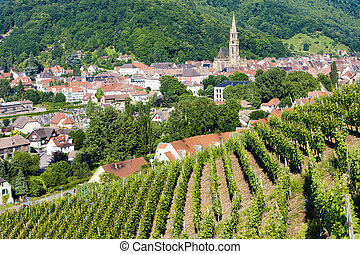 Thann, Alsace, France - grand cru vineyard, Thann, Alsace,...