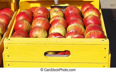 Frische Äpfel in Kiste auf einem Marktstand - Frische rote...