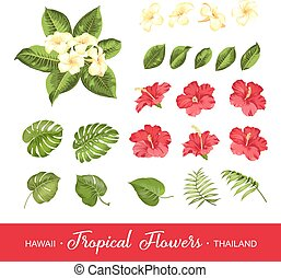 Set of tropical flowers elements. Collection of flowers on a...