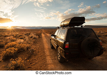 Offroad driving in the desert