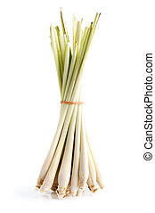 Lemon Grass - Bundle of Fresh Lemon Grass on white...