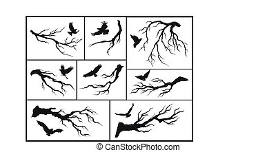 set of branches and birds