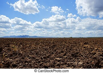 Plowed brown clay field blue sky horizon