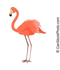 Pink Flamingo Vector Illustration. Wading Bird - Pink...