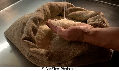 Hands and sack of rice. Male palms holding groats. Grain...