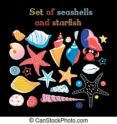 Vector set of sea shells and starfish on a dark background
