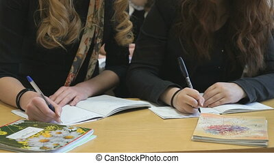 Two pupils decide tasks in copybooks at lesson - Two pupils...