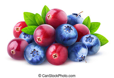 Isolated cranberries and blueberries - Isolated berries....
