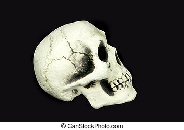 Human skull isolated on black background.