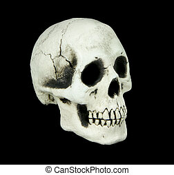 Human skull isolated on black background