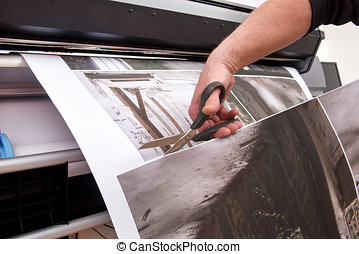 Cutting printed pictures with scissors - Professional man...