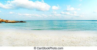 tropical beach in summer