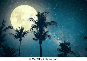 palm tree tropical beach with Milky Way star in night skies...