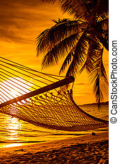 Hammock on a palm tree during beautiful sunset on Fiji Islands