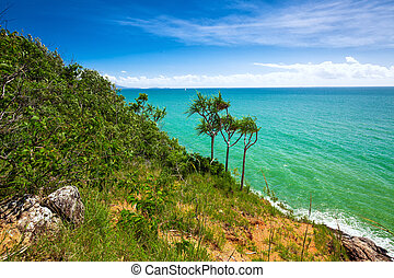 Beach and tropical vegetation from the lookout, Port...