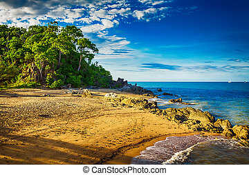 Main beach in Palm cove with rocks and trees during sunset,...