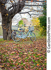 Bicycle in fall autumn park.