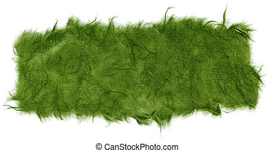 Isolated Rice Paper Texture - Green XXXXL - Texture of green...