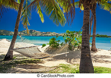 Hammock in the shade of palm trees on a beach