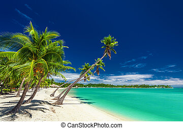 Beach with palm trees over the lagoon on Fiji Islands -...
