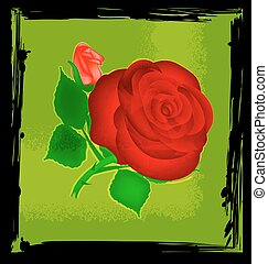 abstract green and red rose - black background with green...