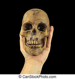 Holding human skull in hand. Conceptual image.( Shakespeare\...