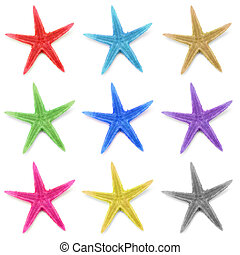 Colorful seastars, isolated on white background.
