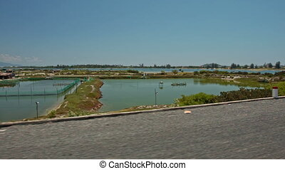 Motion along Asphalt Road by Boundless Rice Fields in Water...
