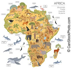 Flat Africa flora and fauna map constructor elements....