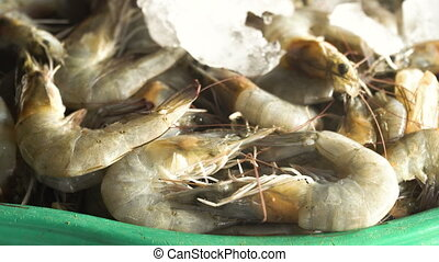 Shrimp on the counter of a street market. - Shrimp on ice on...
