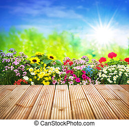 Flowers in garden - Background with the summer flowers in...
