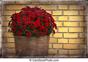 Flower pot front of yellow brick wall and old photo paper...