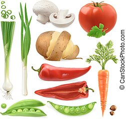 Realistic vegetables. Potato, tomato, green onions, peppers,...