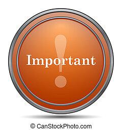 Important icon. Orange internet button on white background.