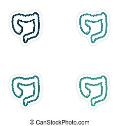 Set of paper stickers on white background Duodenum human