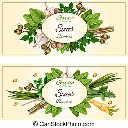 Spices and herbs banner set for food design - Spices and...
