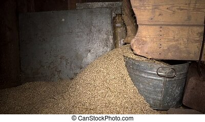 chaff and straw remain falling from grain sifting machine....