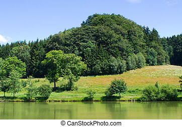 Pond surrounded by green meadows - Beautiful pond surrounded...