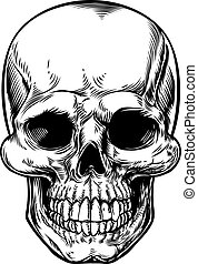 Skull Drawing - Skull drawing in a vintage retro woodcut...