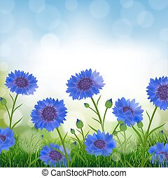 Cornflowers With Bokeh With Gradient Mesh, Vector...