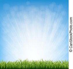 Grass With Blue Sky And Grass Border