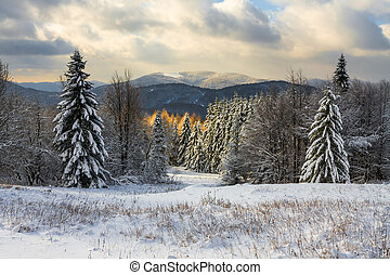 Beautiful winter landscape in the mountains, Bieszczady,...