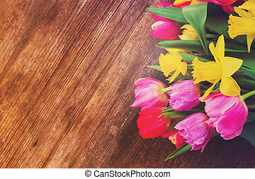 bouquet of tulips and daffodils - fresh pink and red tulips...