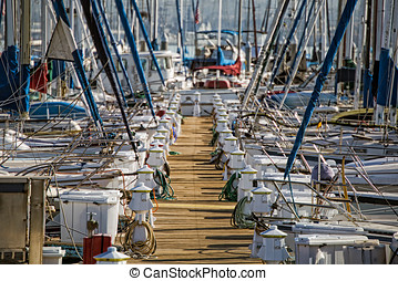 Tidy - Sailboats docked at the Fiddler's Cove Marina south...
