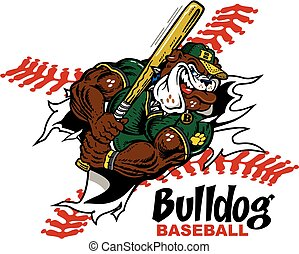 bulldog baseball player ripping through the background for...